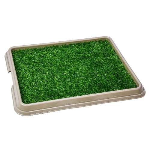 Xixi Green Graminha Pet Injet