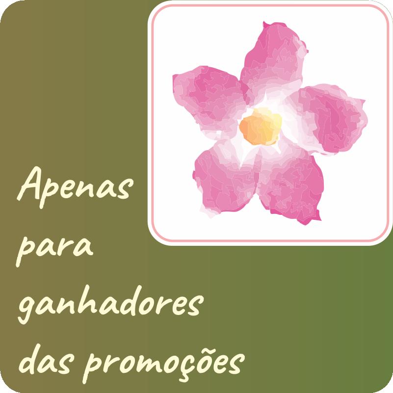 PREMIO DE PROMOÇÕES DA APOLONIA
