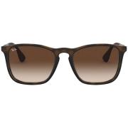 Óculos Ray Ban Clássico RB4187L 85613 54 Tartaruga