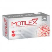 Motilex Com 60 Cápsulas