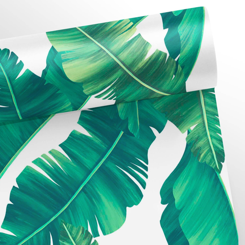 Outlet- Papel de Parede Floral Folha de Bananeira 0,58 x 2,90  - TaColado