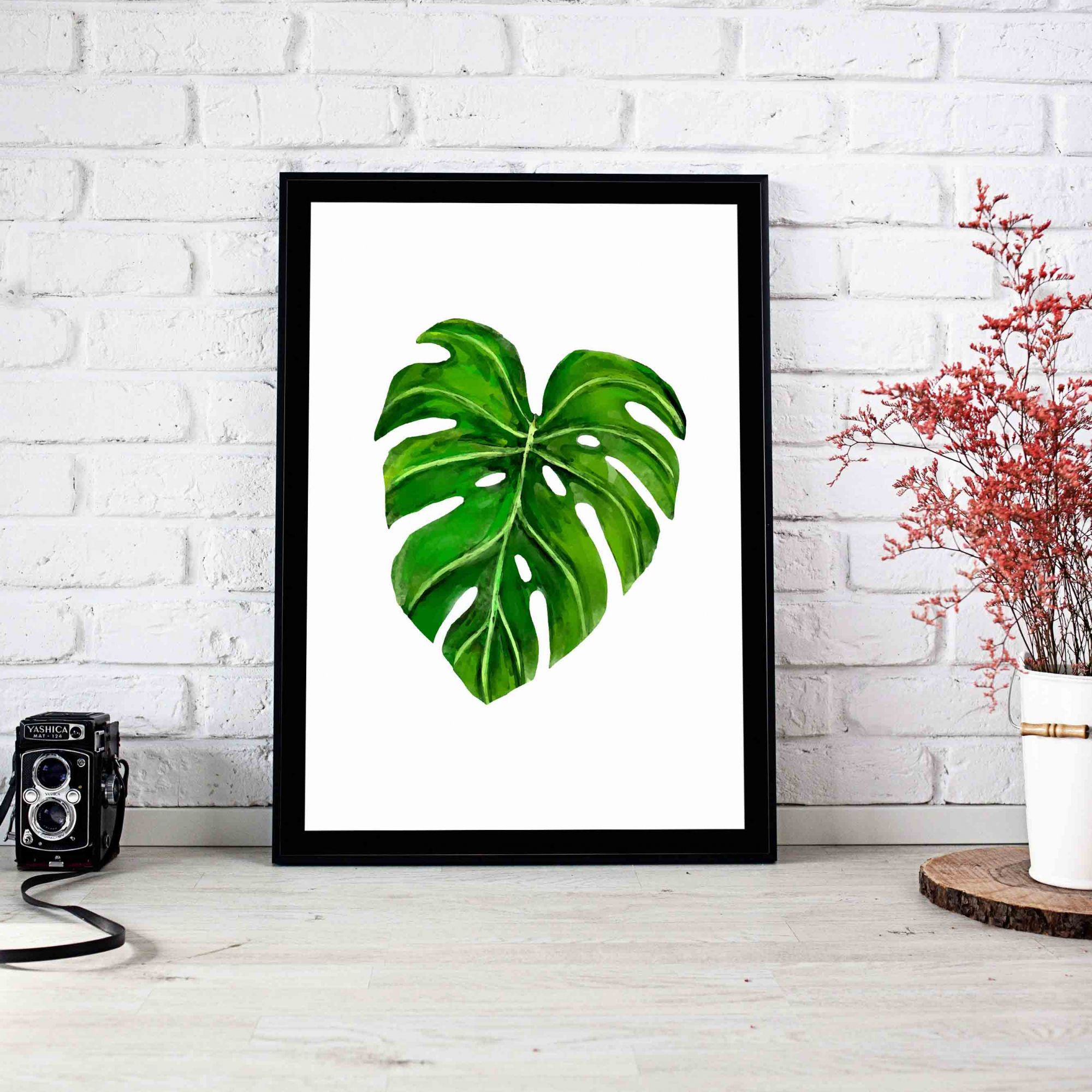 Quadro Decorativo Monstera  - TaColado