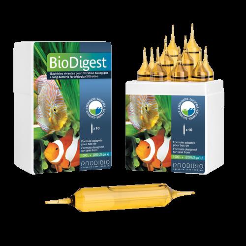 Biodigest Pro 10 Ampolas