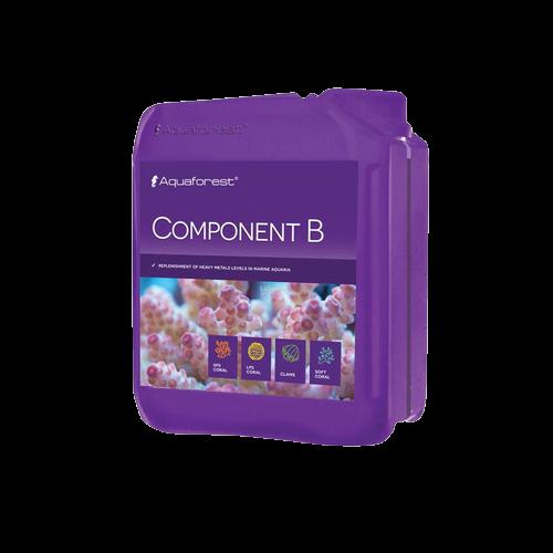 Component B 2L