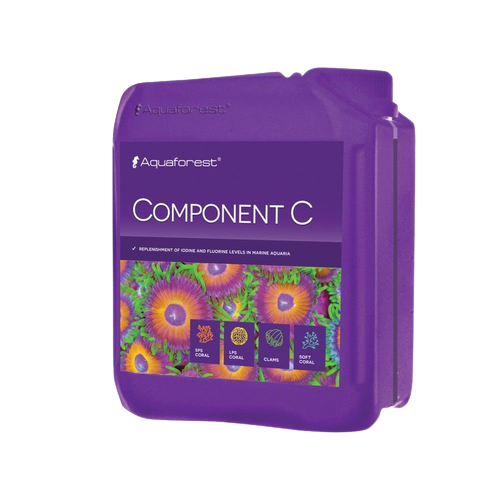 Component C 2L