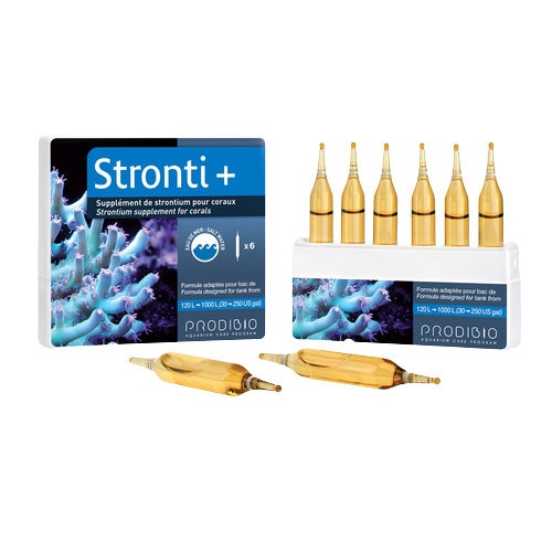 Stronti + 06 Ampolas