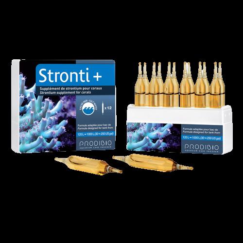 Stronti + 12 Ampolas