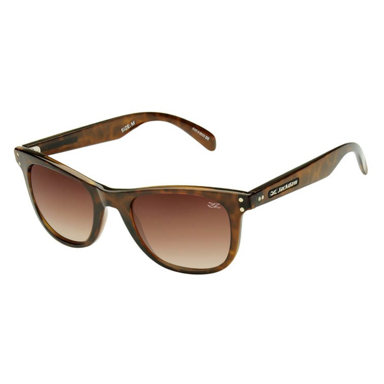 Óculos de Sol Jackdaw 40 Marrom Demi Brilho com Lentes Marrom