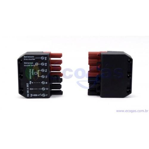 Plug M/F COFI Spina