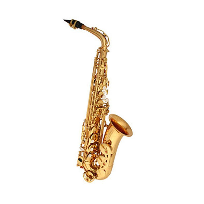 Saxofone Alto Winner