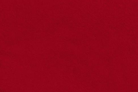 Tecido Felpudo Vermelho 0250 - 1,40m de Largura