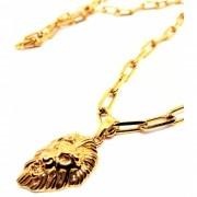 Cordão Corrente Elos Cadeado Banhada Ouro 18k Ping Leão