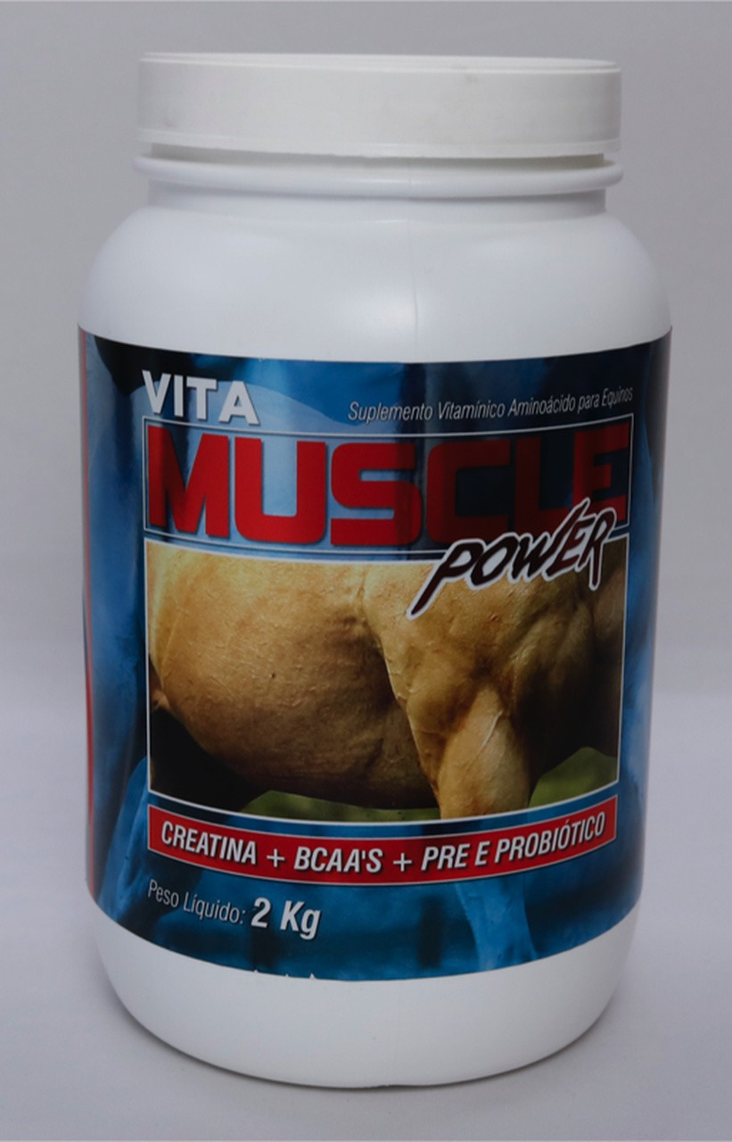 MUSCLE POWER