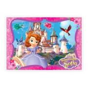 Princesa Sofia Kit Decorativo Painel Mais 11 Enfeites