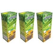 Suco Néctar De Laranja Jandaia 200ml Pack 3 Unidades