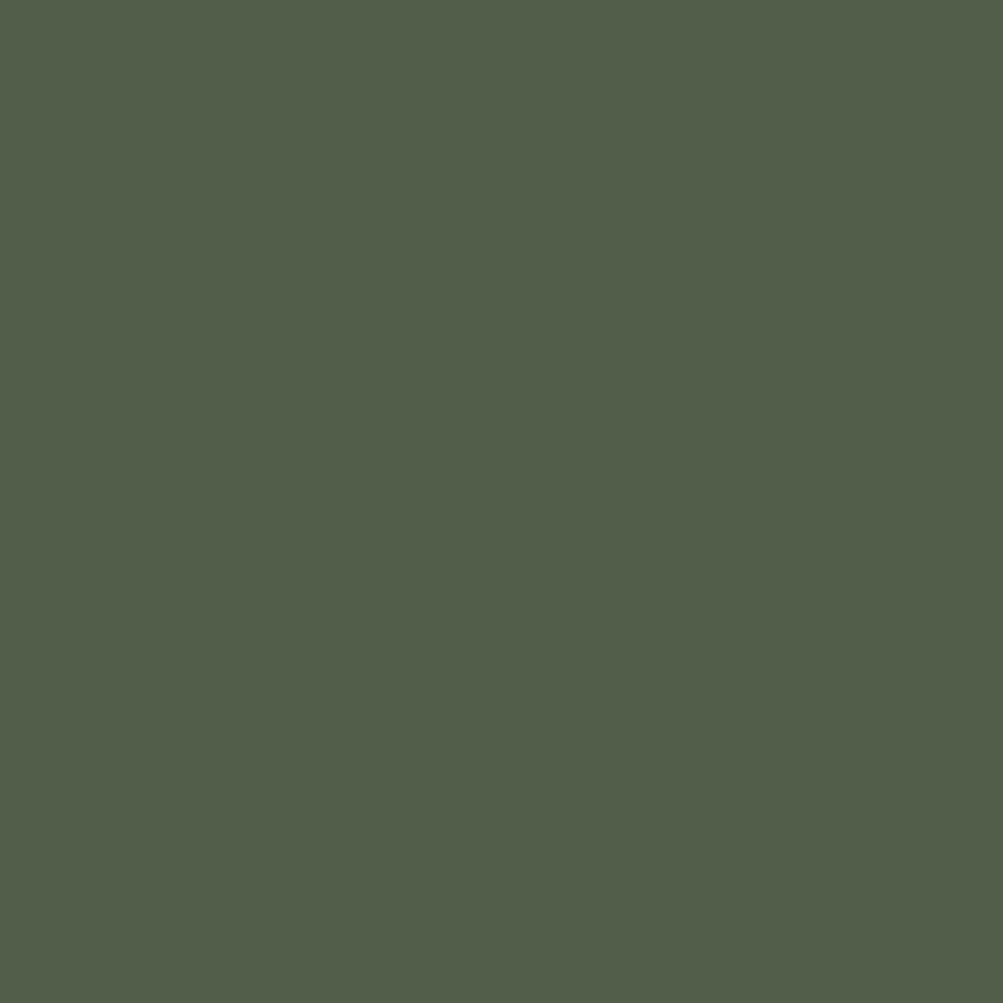 Neoprene Verde Musgo