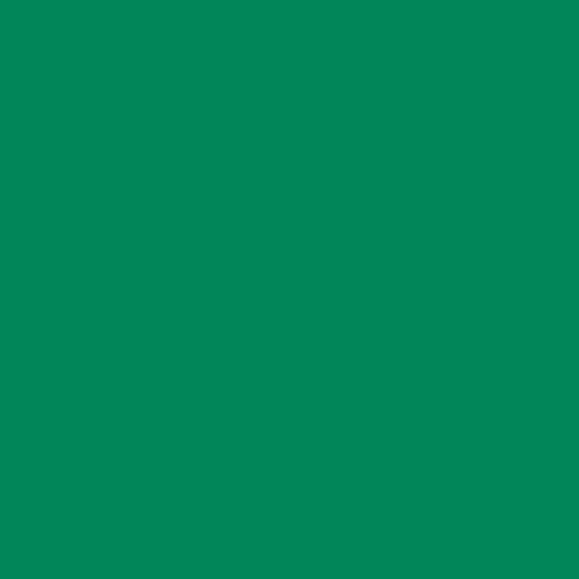 Suplex Verde Bandeira