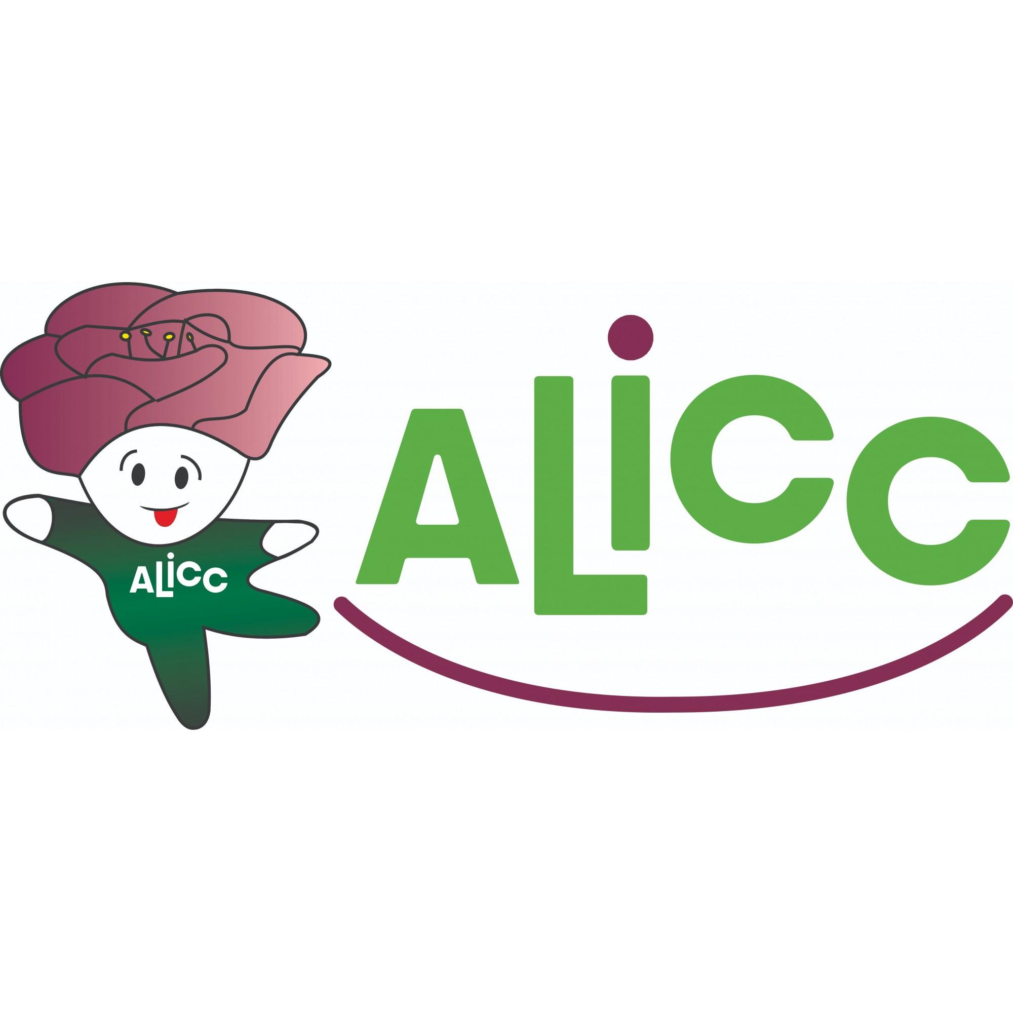 Kit com 3 Máscaras de pano - ALICC