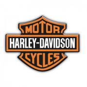 Adesivos Resinado Metalizado Harley-Davidson - 14,5 x 11 cm - STHD0023RG