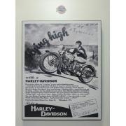 Chapa Decorativa - Motivo Harley-Davidson - MDF 40 X50 CM - Modelo 07 - 034/33602