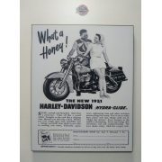 Chapa Decorativa - Motivo Harley-Davidson - MDF 40 X50 CM - Modelo 10 - 034/05367