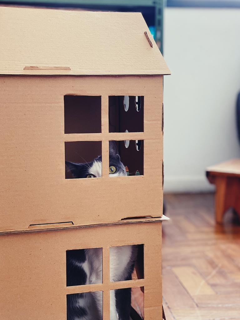 Casa de dois andares de papelão para gatos