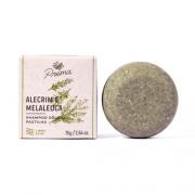 Shampoo Sólido - Alecrim e Melaleuca - cabelos oleosos - Prema