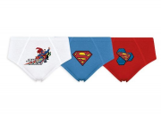 Cueca Slip Infantil SUPERMAN DC - KIT
