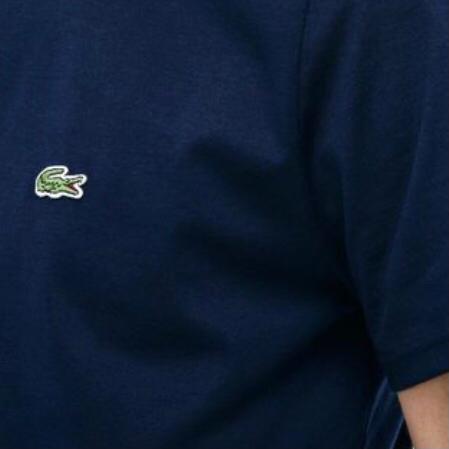 Camiseta Lacoste AM1