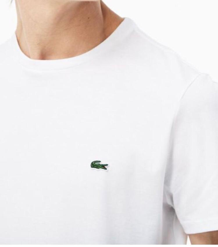 Camiseta Lacoste Branca B1