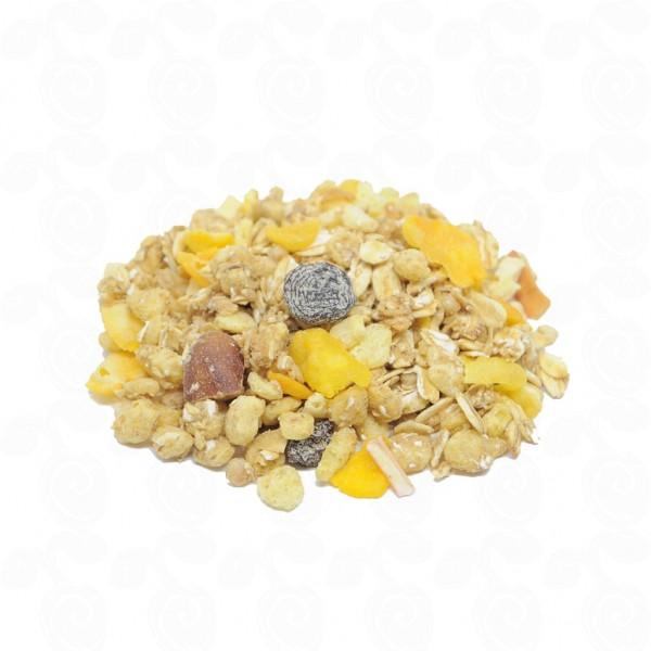 Granola Diet 100g
