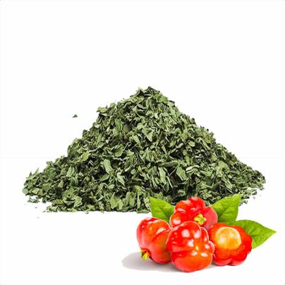 Pitanga folhas desidratadas 100gr