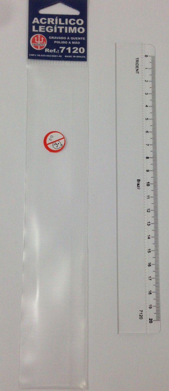 Régua de Acrílico Trident 20cm - com Escala (mm) - Ref.7120