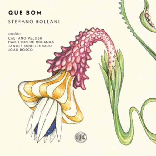 CD - Stefano Bollani - Que bom