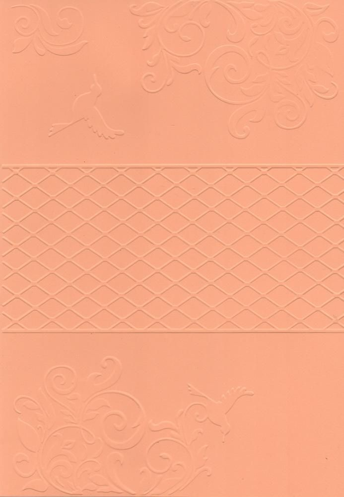 Placa de Emboss Beija-Flor 21cm x 29,7 (A4) 21814 (PPR032) - Toke e Crie