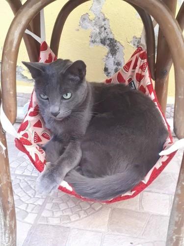 Cama Rede Para Gatos Fixar Cadeira Suspensa Descanso Pet