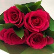 Bouquet de Rosas Pink