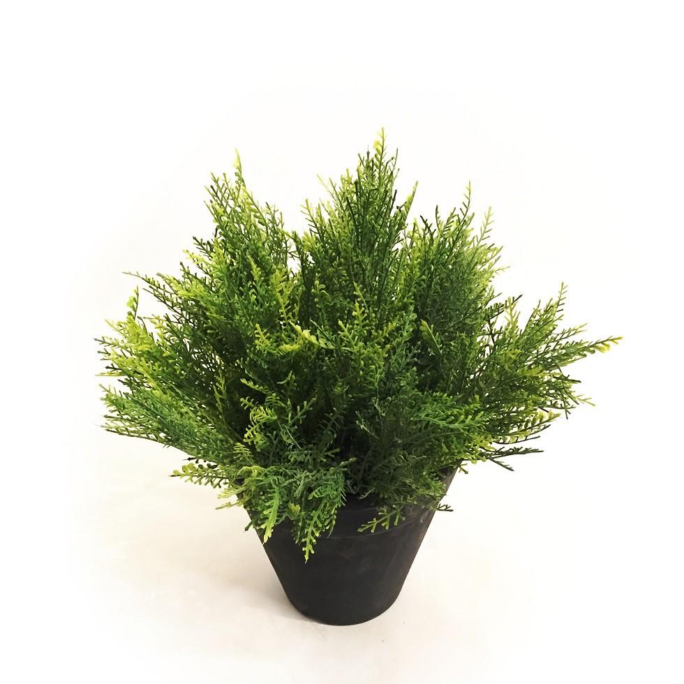 Arranjo Pinus Verde - Permanente Artificial