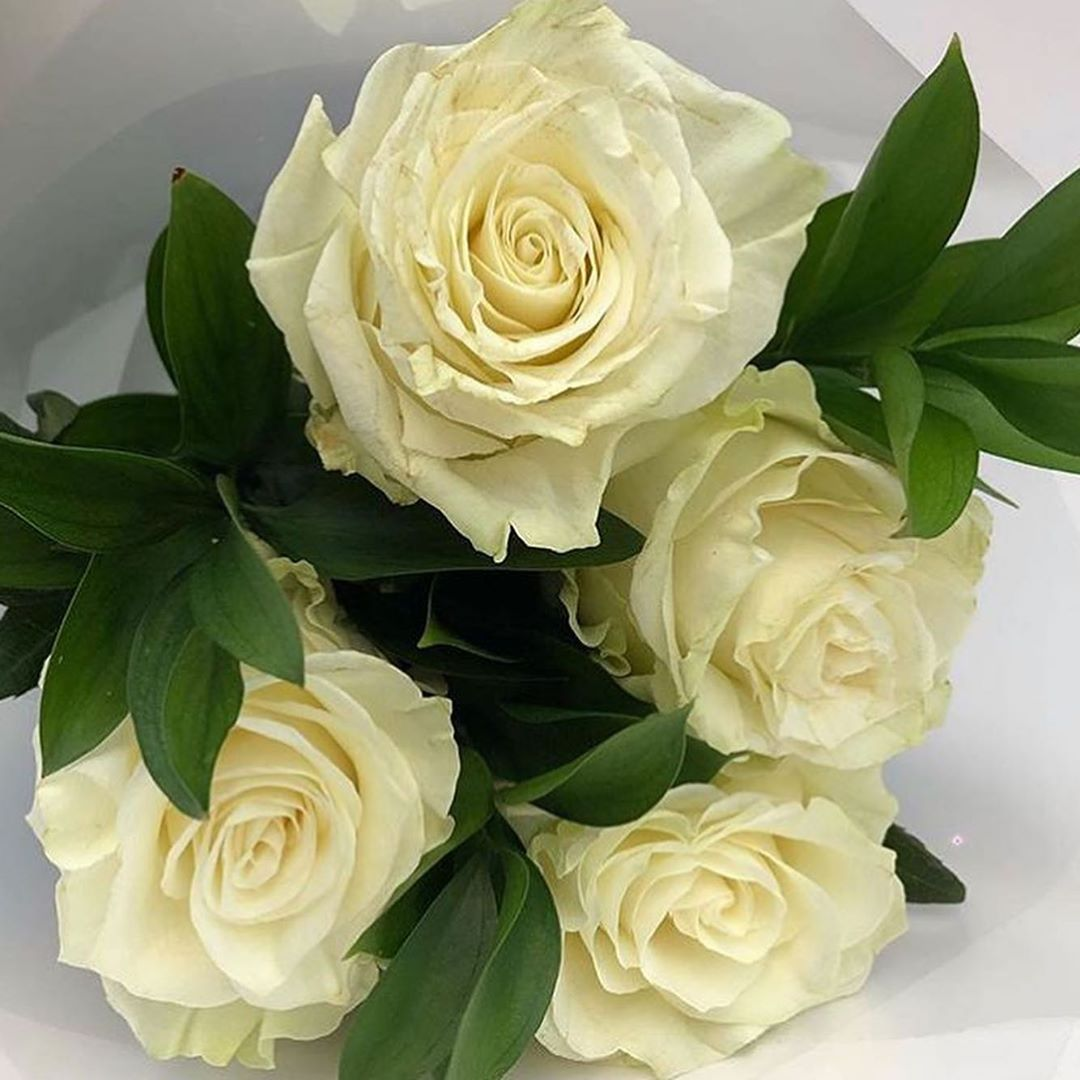 Bouquet de Rosas Branca
