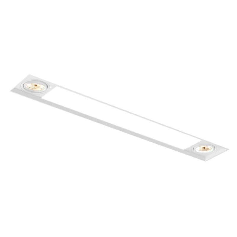 Luminária de Embutir Retangular No Frame 2x PAR20 / 2x Tubular T8 IN60233  NewLine