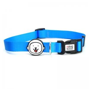 Coleira para Cachorro Azul Neon
