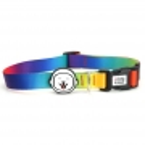Coleira para Cachorro Rainbow