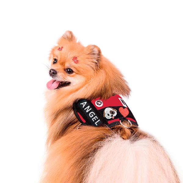 Peitoral para Cachorro Europa