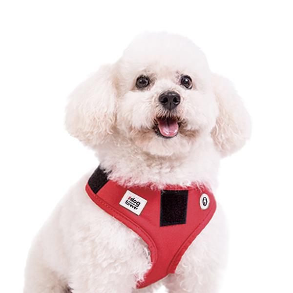 Peitoral para Cachorro Voyager