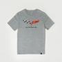 Camiseta Masc. Chevrolet Cavalera Corvette Flag - Cinza Mescla