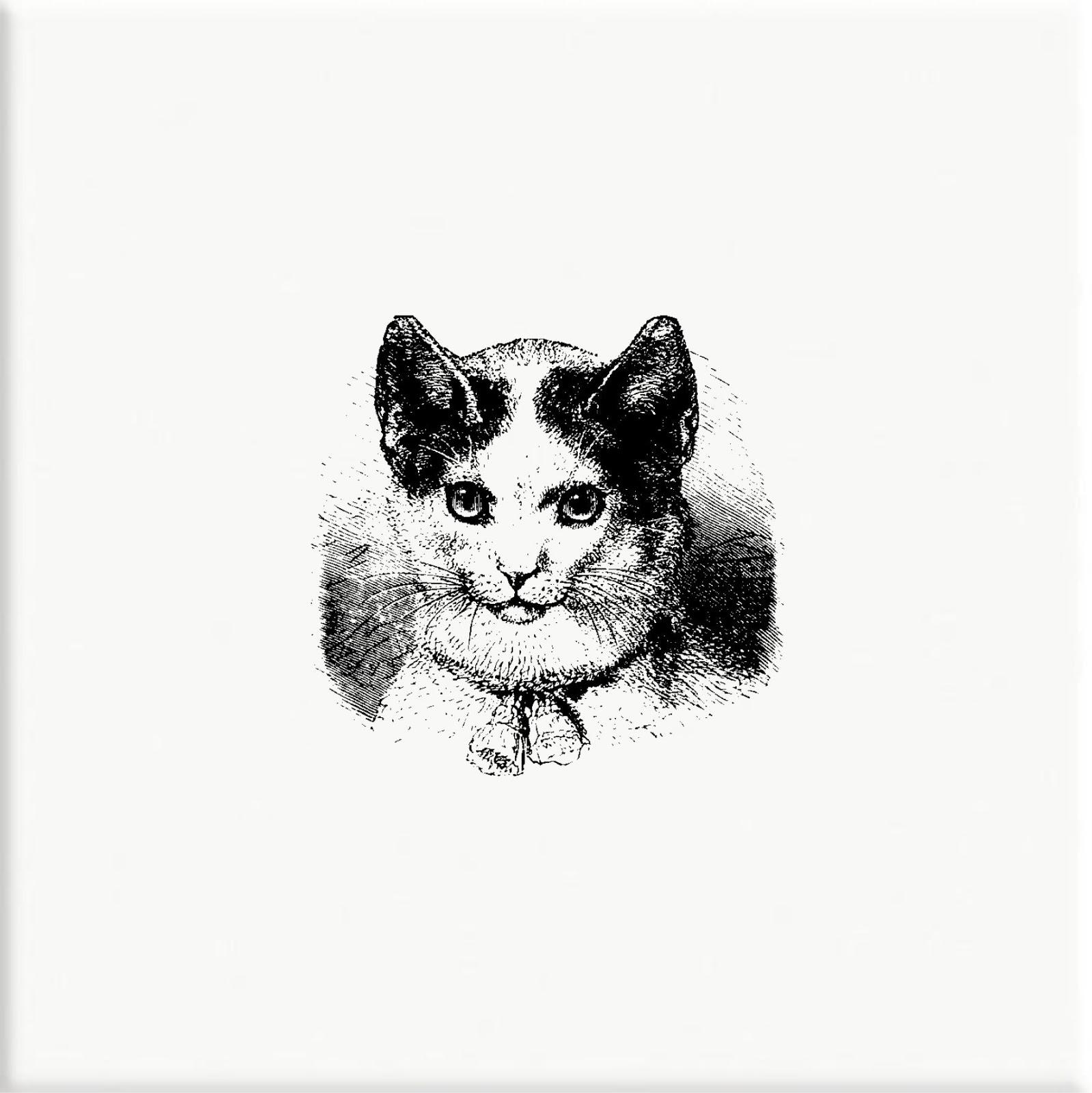 Azulejo - Kitten