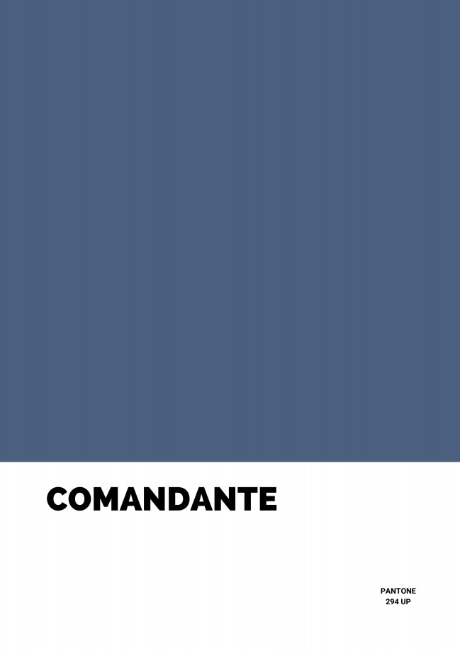 Pôster Comandante