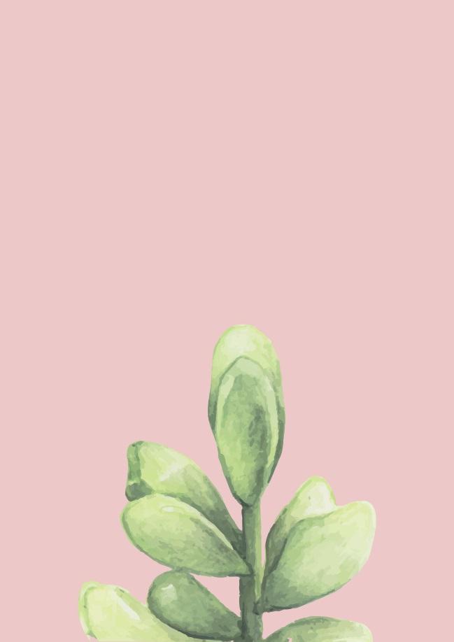 Pôster Flor do Deserto V