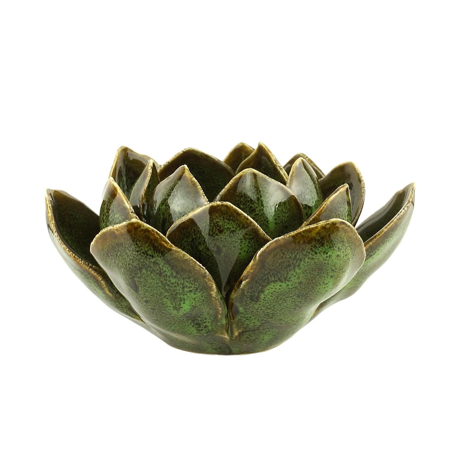 Suculenta de Cerâmica