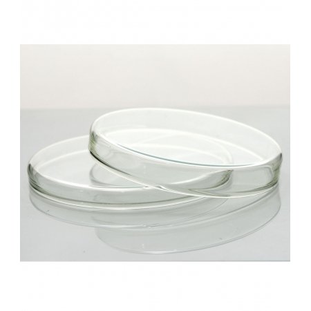 PLACA DE PETRI 100 X 20 MM - Laborglas - Cód. 9375548